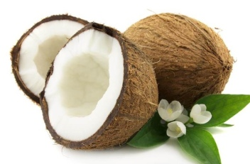 coconut-pic